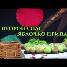 Второй спас - яблочко припас